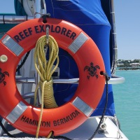 Bermuda Reef Explorer Turtle Cove Glass Bottom Snorkelling Adventures